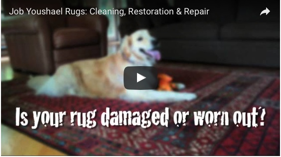 Is Your Rug Damaged or Worn