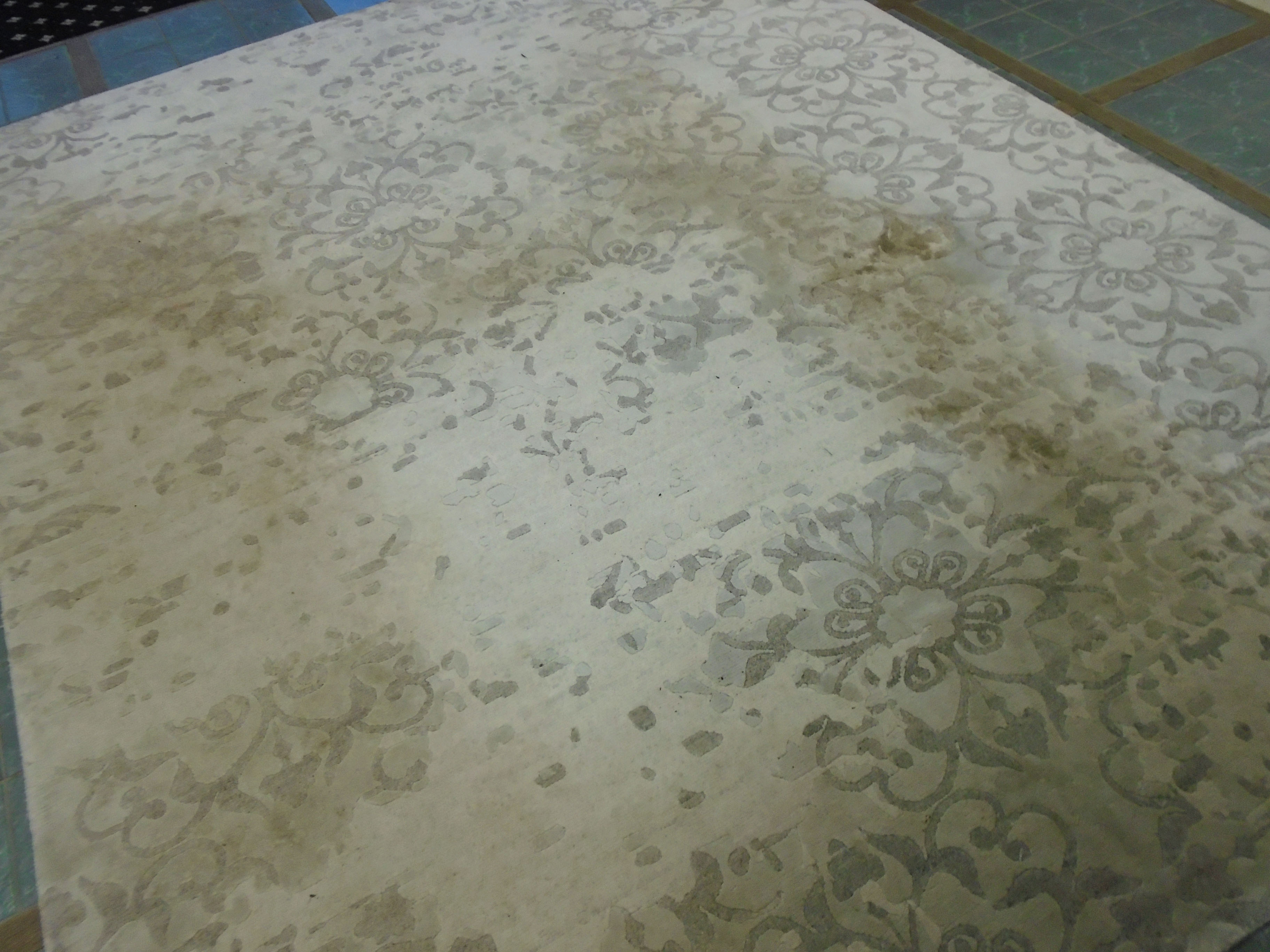 Dirty Bamboo Silk Rug Before